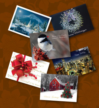 bulk christmas cards business holiday greetings cards cheap - Cheap Christmas Cards In Bulk